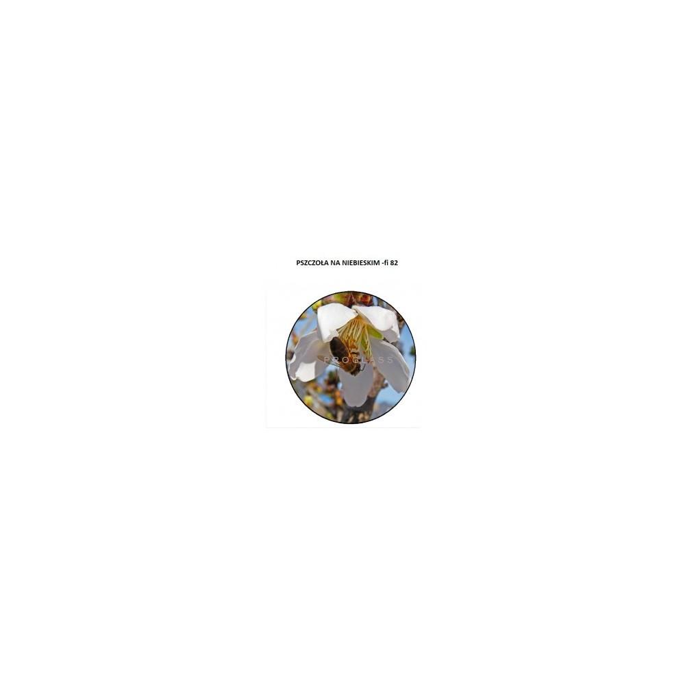 Zakrętka fi82 Pszczoła Niebieska
