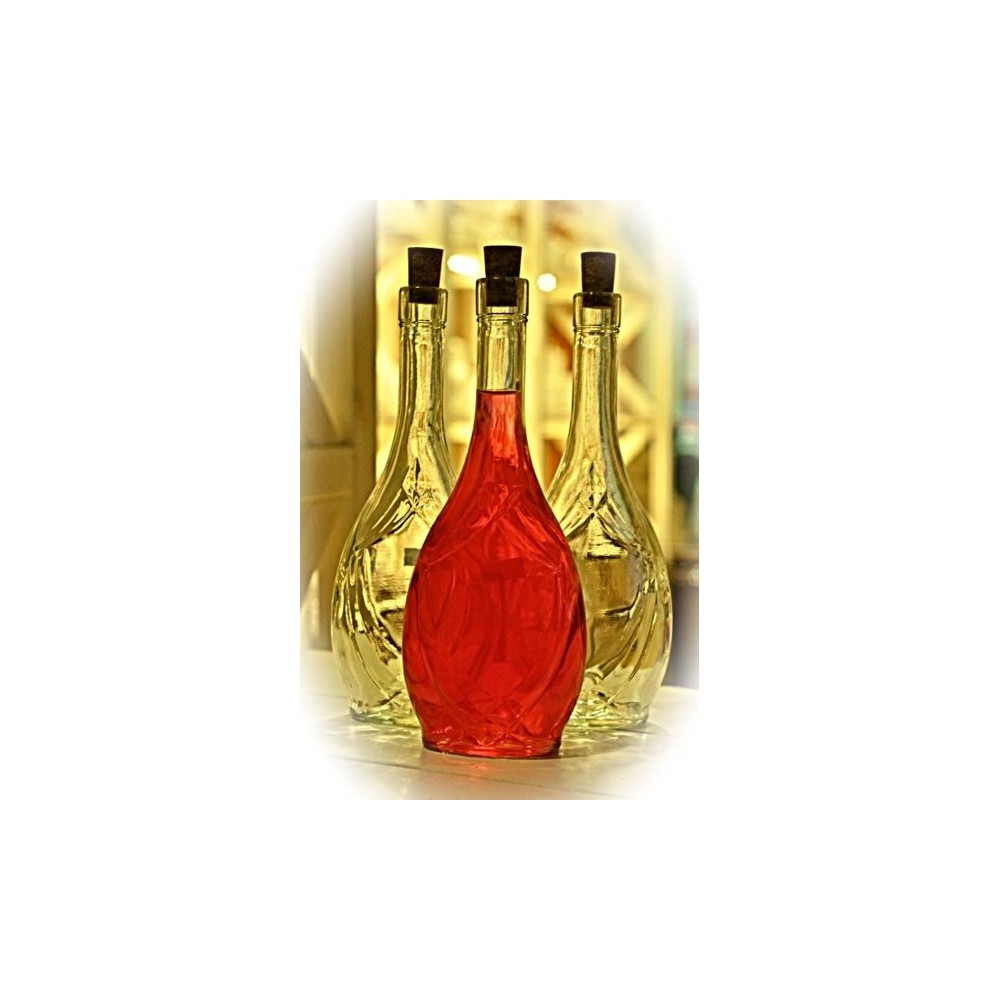 Butelka Ikona 0,5L